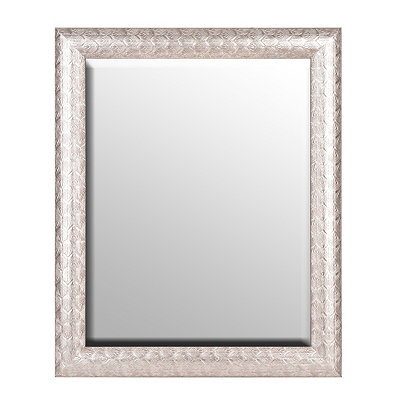 Silver Peacock Framed Mirror, 28x34