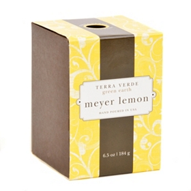 Meyer Lemon Terra Verde Candle
