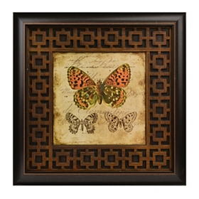Naturalist I Framed Art Print