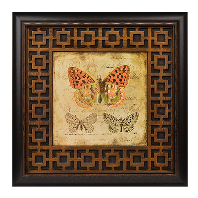 Naturalist II Framed Art Print