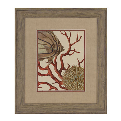 Red Coral I Framed Art Print