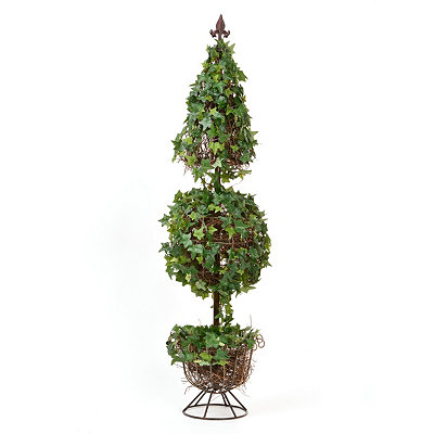 Ivy Topiary, 4 ft.