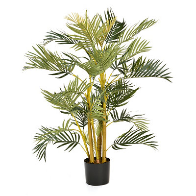 Areca Palm Tree, 4 ft.