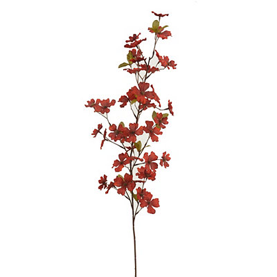 Burgundy Blossom Stem