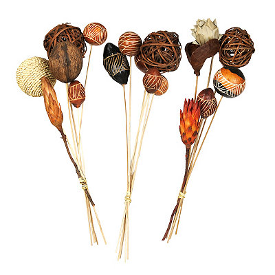 Exotic Dried Pod Bouquets