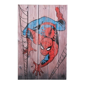 Spider-Man Canvas Art Print