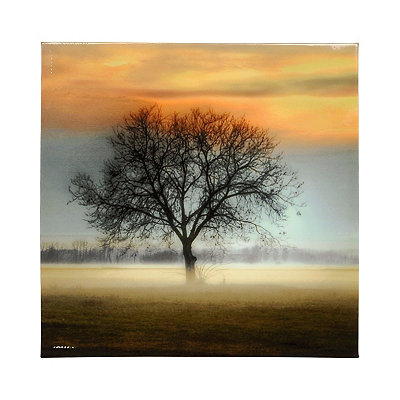 Misty Silhouette Canvas Art Print