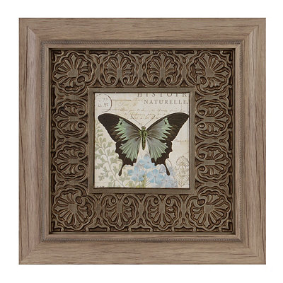 Botanical Butterfly I Framed Art Print