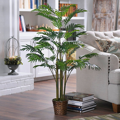 Areca Palm Tree with Basket Planter, 4 ft.