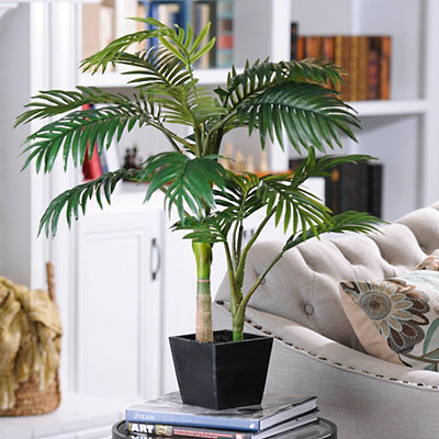 Golden Cane Palm Tree with Wood Planter, 3 ft.