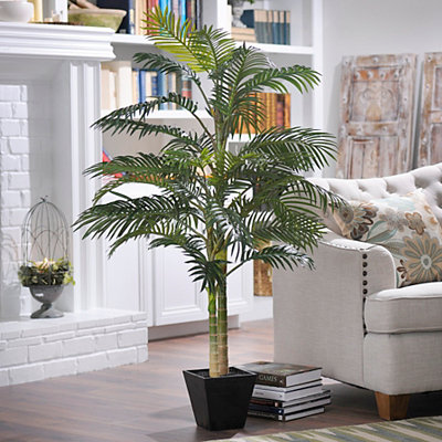 Golden Cane Palm Tree with Wood Planter, 5 ft.
