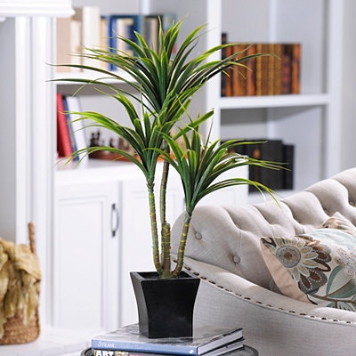 Yucca Tree with Wood Planter, 32 in.