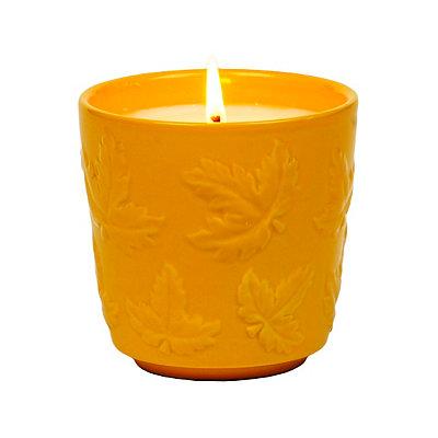 Balsam Fir Autumn Jar Candle