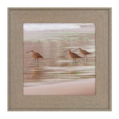 Seagulls I Framed Art Print