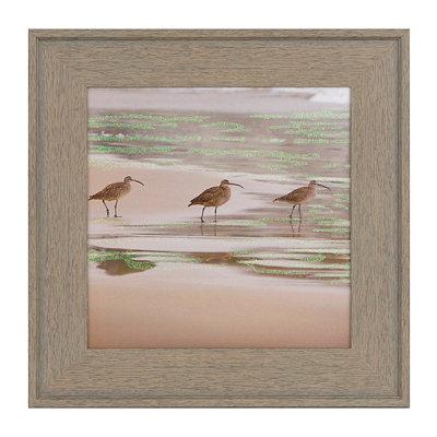 Seagulls II Framed Art Print