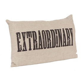 Extraordinary Linen Pillow