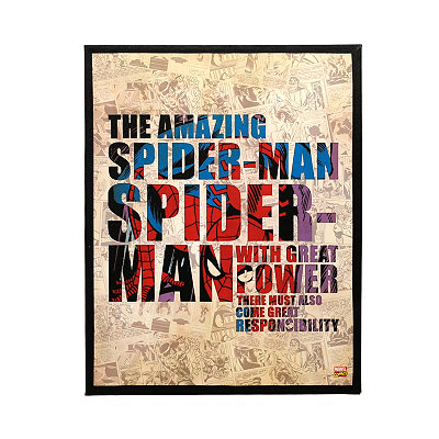 The Amazing Spider-Man Canvas Plaque