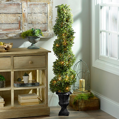 Pre-Lit Boxwood Spiral Topiary, 54 in.