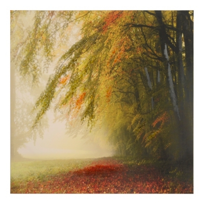 Autumn Returns Canvas Art Print