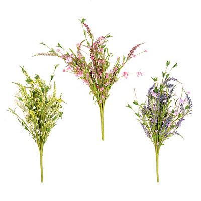 Spring Lavender Bushes
