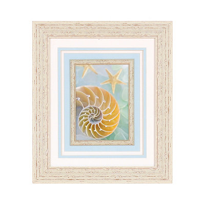Seaglass Spiral Seashell Framed Art Print
