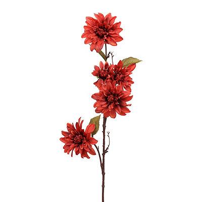 Red Dahlia Branch