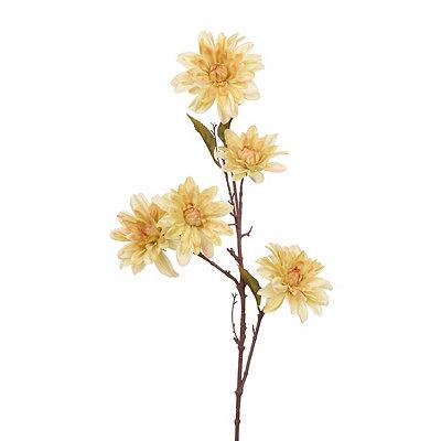 Ivory Dahlia Branch