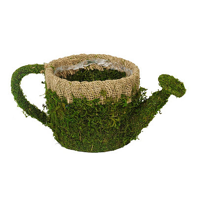 Moss Watering Can Planter