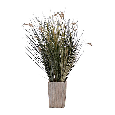 Mixed Grass Arrangement