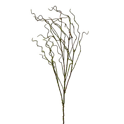 Curly Moss Branch, 44 in.