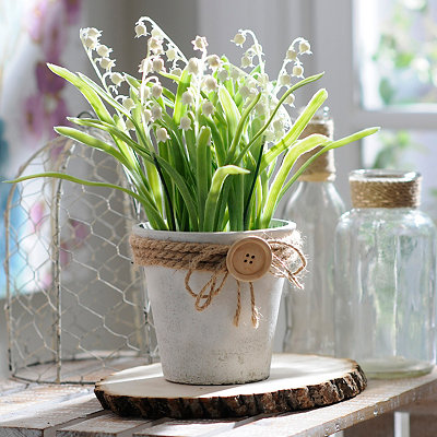 Lily of the Valley Button Pot Arrangement