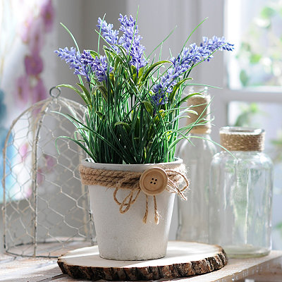 Lavender Button Pot Arrangement