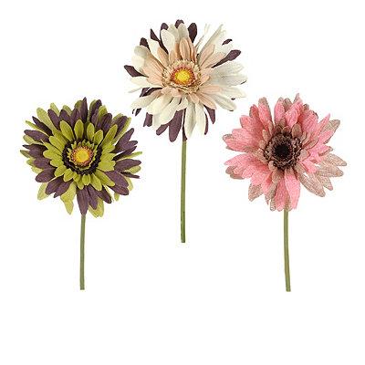 Multicolor Daisy Stems