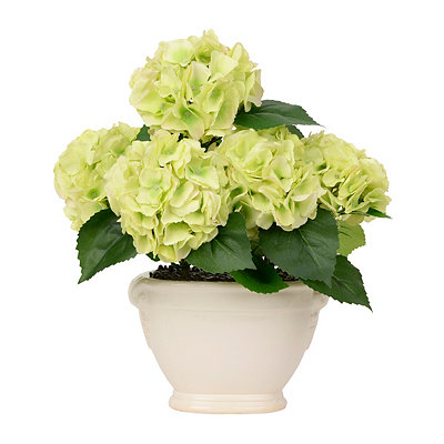 Spring Green Hydrangea Arrangement