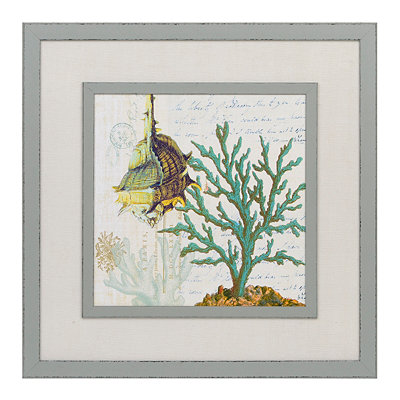 Oceania Seashell Framed Art Print