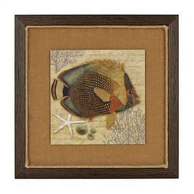 Angel Fish I Framed Art Print