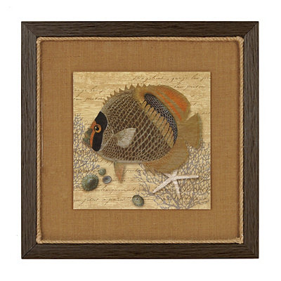 Angel Fish II Framed Art Print