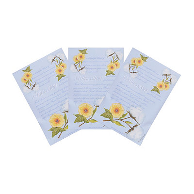 White Cotton Sachets, 3-pack