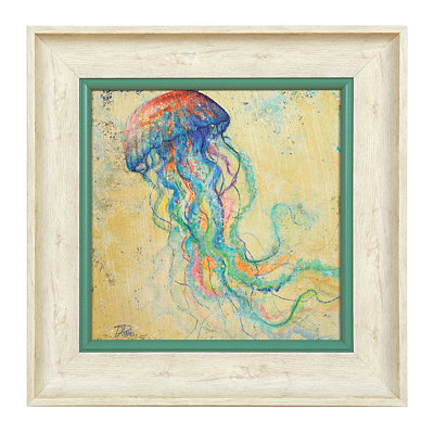 Coastal Jellyfish Shadowbox