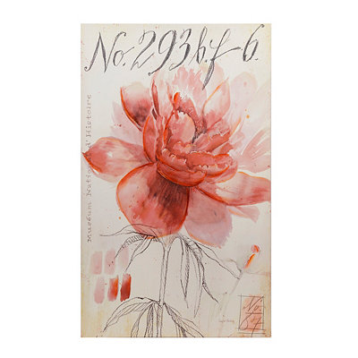Pink Flower Sketch Canvas Art Print