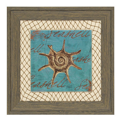 Turquoise Seashell Framed Art Print
