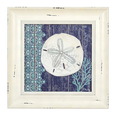 Blue Sand Dollar Framed Art Print