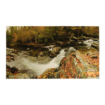 River Panorama Canvas Art Print