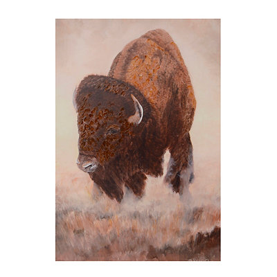 Brown Buffalo Canvas Art Print
