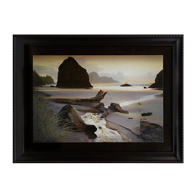 Coastal Mist Framed Art Print