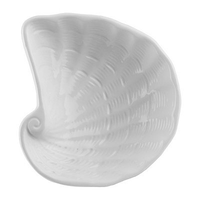 White Conch Shell Bowl