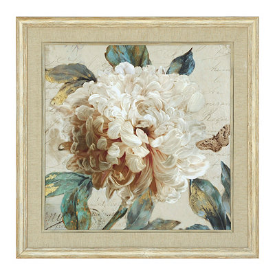 Morning Peony I Framed Art Print