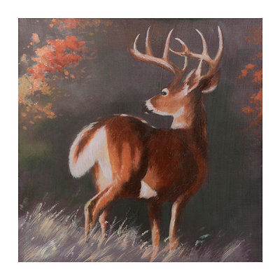 White Tail Watching Canvas Art Print