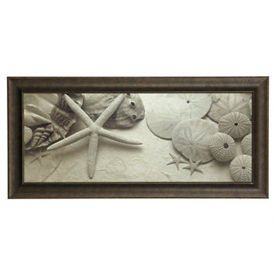 Black and White Shells I Framed Art Print