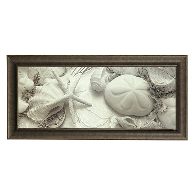 Black and White Shells II Framed Art Print